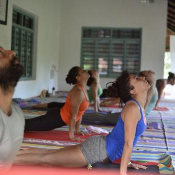 About The Ashtanga Yoga Shala